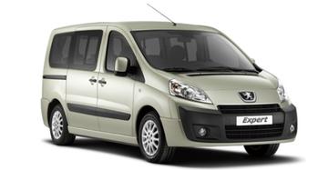 Peugeot Expert van 2007 tot 2016 Dakrails