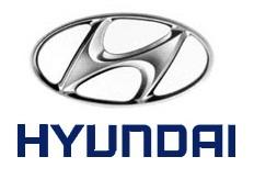 Hyundai Pushbar