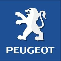 Peugeot Pushbar